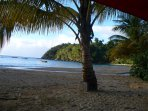 Find a quiet, shady spot under a coconut palm kike this one on Castara Beach