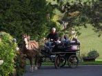 Promenade dans la campagne environnante avec Dauphine et le propriétaire