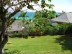 Tropical back garden.