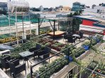 rooftop garden comes with every rooms