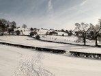 Snowy frolics in the village.