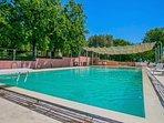 Swimming pool 14x6 with solarium