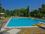 Wide pool (16x8)