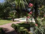 Aperçu du jardin et de la piscine