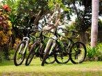 Villa Maridadi - Bike ride