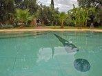 La piscine à débordement 10 mètres par cinq