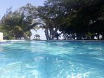 Best place to be! The pool is shaded by mature trees and features a swim up bar.
