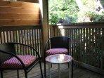 Rear porch & deck chairs