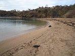 Beach at Crail Harbour