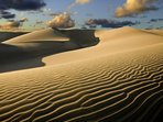 Visit the Dunes of Maspalomas. A camel ride is a must!