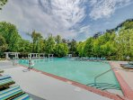 Beachwood Resorts Pool
