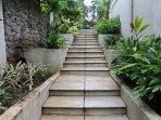 Stairways to the lower ground Verandah (Below Swimming Pool)