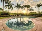Sunset through the Royal Palms at Villa Tranquila