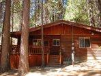 Shehadey's Retreat Cabin