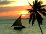 Typical sundowner at terrace of Africa House in Stone Town