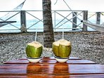 Have fresh coconut water from our trees.