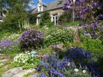 Knock holiday cottage exterior with gardens in summer