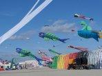 Kite Festival Berck April, Fantastic,