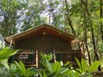 Paw Haven offers 'Paw-Cation'