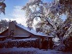 A rare Texas snow