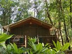 Paw Haven offers 'Paw-Cation' A 'Glamping' vacation in nature. Where your pet invites you!