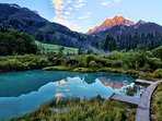 Zelenci nature reserve is a 35 minute drive from the apartment.