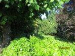 Appartamento con giardino in villa immersa nel verde vicina a Como