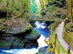 Walkway trail at Bushkill Falls