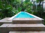 Tao Wellness Center: Lap Pool