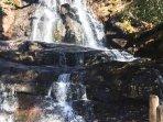 Laurel Falls trailhead is just a short drive away.