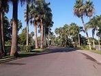 Golf Course El Tigre