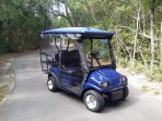 4-passenger golf cart comes with house