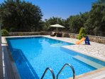 Large outdoor swimming pool of Family Villa Niriides