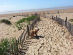 Dog friendly beach at St Annes is only a 15 minute drive away