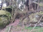 Ancient Sandstone boulders by our river boundary on the Hoteo river
