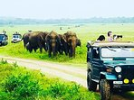 Get in quick and book tour dream tour to sri lanaka today.