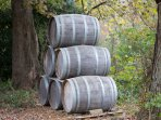 Visit the numerous vineyards just a few miles from us.