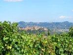 6 bedroom Apartment in Certaldo, Tuscany, Italy : ref 5446651