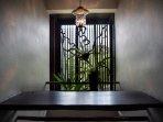 Indoor Jungle Ferns