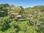 The home is surrounded by towering trees in a lush, private setting.