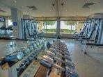 Gym Equipment - Weights
