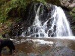 Fairy glen waterfalls
