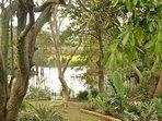 Rear Garden with views over lagoon & mountains