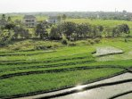 the villa offers an amazing direct rice field view