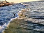 3 Min to Epic Surfing