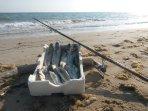 Una bella giornata di pesca