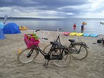 Your own Family beach bikes will be some of the best fun you have along the Sound paths.