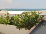 Within minutes of Meia Praia beach and beach restaurants