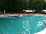 Private 12' foot to 4' foot in-ground heated pool. WILL CLOSE 9/24/18
