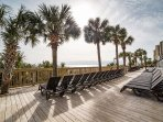 Head to the Sun Deck to Catch Some Rays